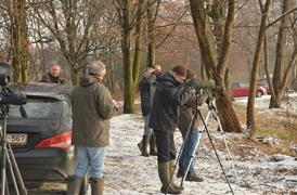 Internationale watervogeltelling op alle Molse (zand)putten